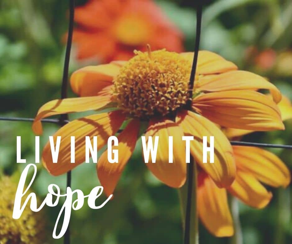 Living With Hope photo