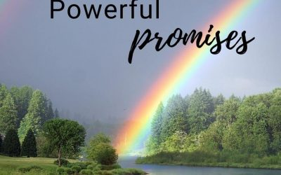 Powerful Promises We All Need